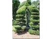 topiary_garden.jpg