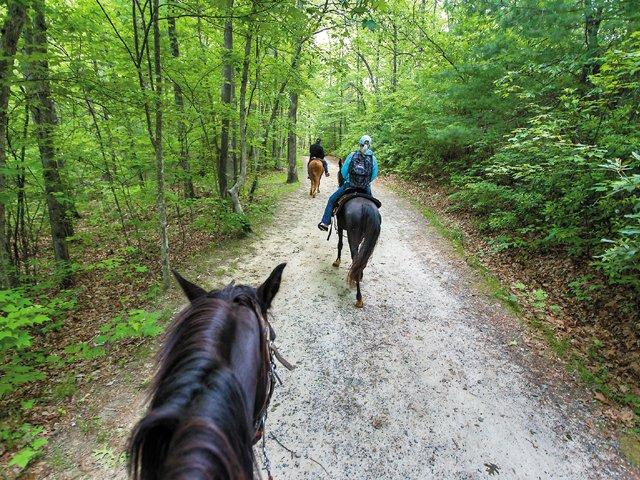 Horesback_Trail.jpg