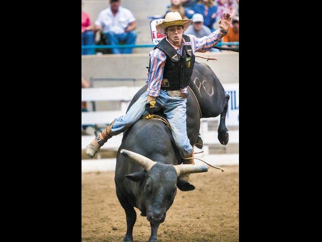 Rodeo_Logan.jpg