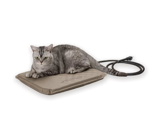 SmartChoice_CatPad.jpg