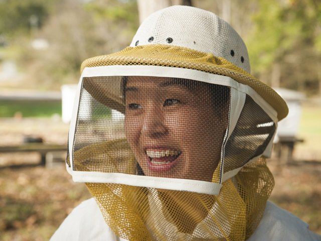 Bees_Tsuruda.jpg