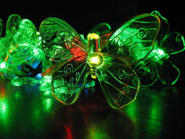 SmartChoice_Butterflies.jpg