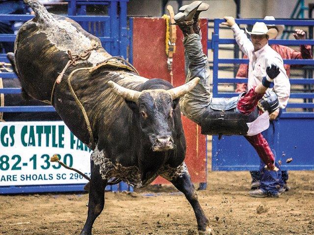 Rodeo_TimMurphy.jpg