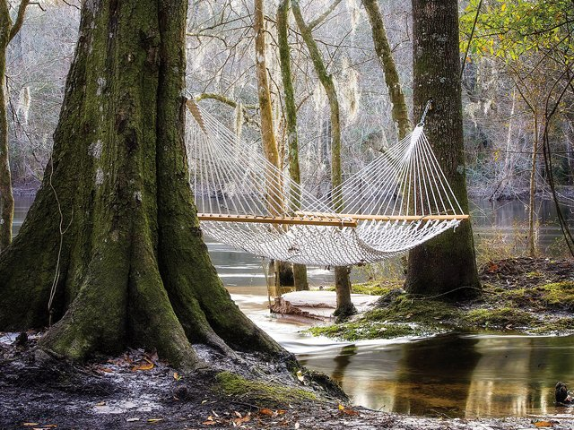 treehouse_hammock.jpg