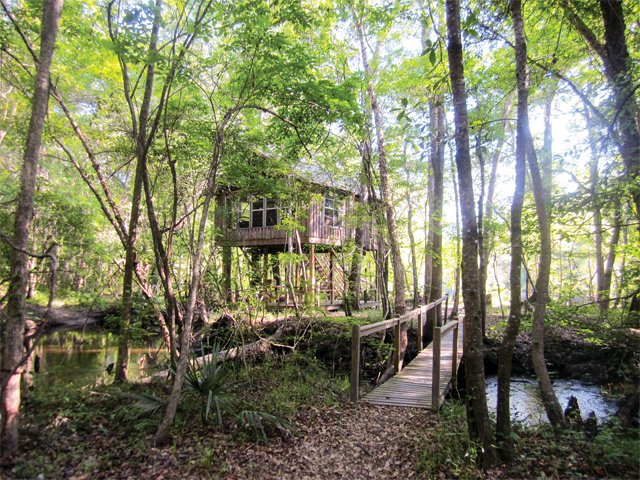 treehouse_treehouse.jpg