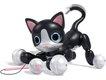 Zoomer-Kitty.jpg