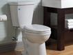 Delta Flush IQ toilet