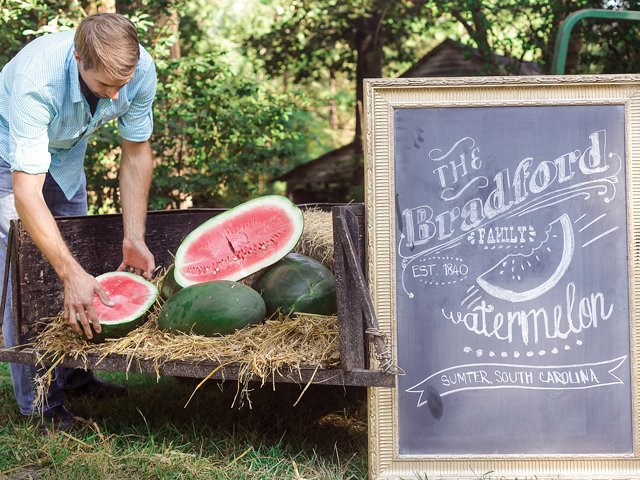 Watermelon pickup (Lead Art).png