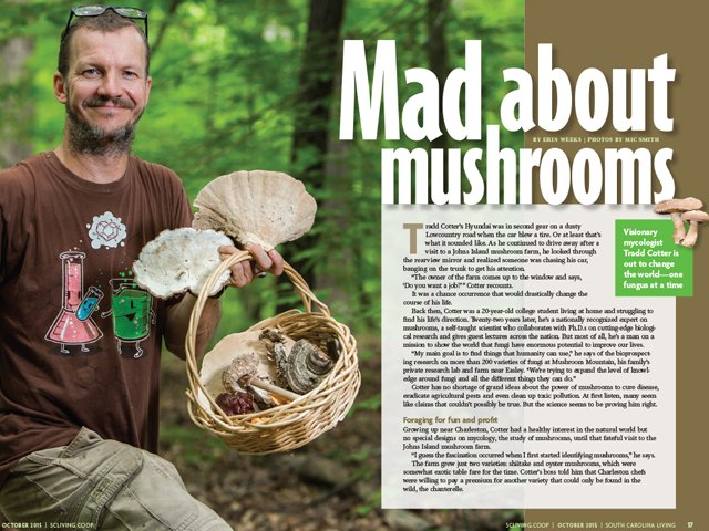 Mad-About-Mushrooms-Tradd-Cotter.png