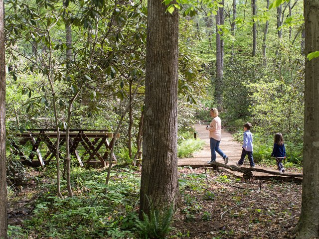 A Short Walk Across South Carolina