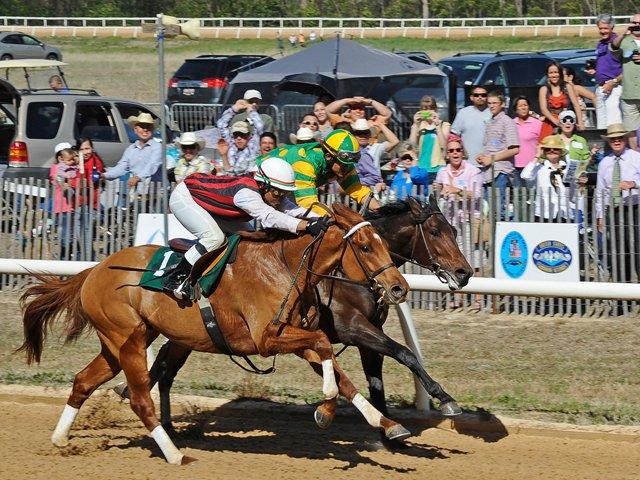 aiken-trials-barry-bornstein-american-racehorse.png