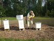 ag-and-art-beekeeper.png