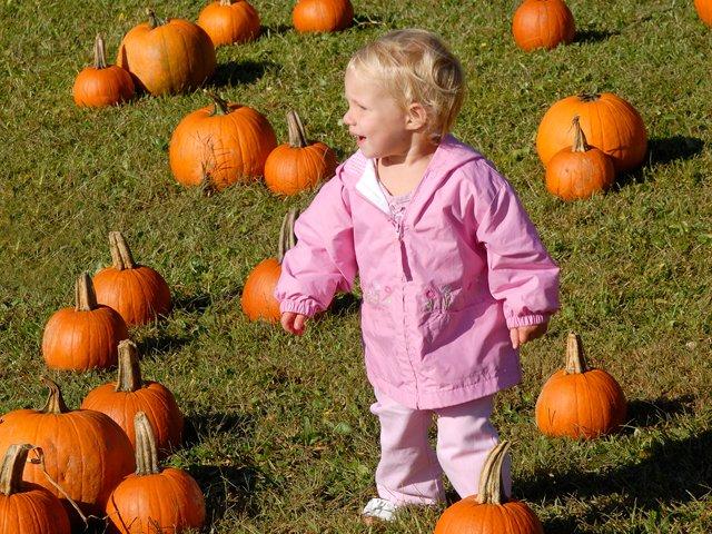 harvest-festival-pumpkin-girl.jpg