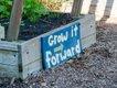 Magnolia-community-garden-raised-beds-1.jpg