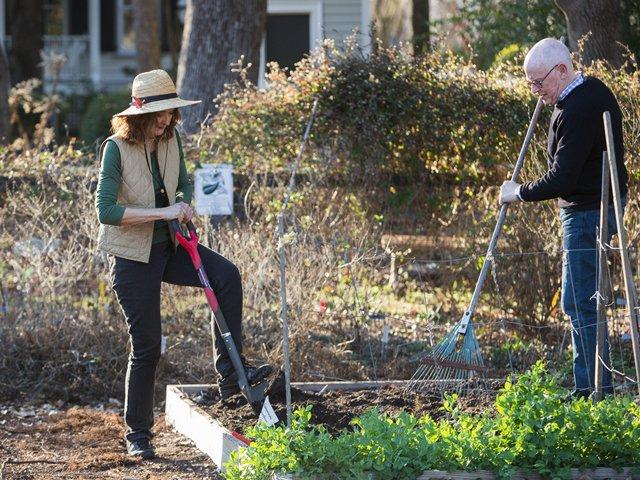 ION-Community-Garden-2.jpg