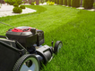 Five-Mistakes-Lawn-Care-credit-Mariusz Blach_istockphoto.png