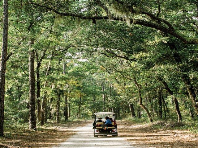 Daufuskie-Island-Golf-Cart-Tour.png