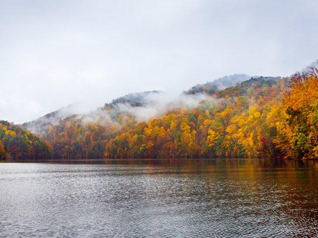 Devils-Fork-Lake-Jocassee-State-Park-Hwy-11 1.png