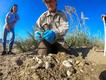 Saving-sea-turtles-Cape-Romain-Nest-Survey.png