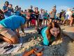 Saving-sea-turtles-Mary-Alice-Monroe.png