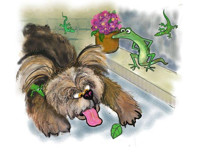 Humor-lizard.png