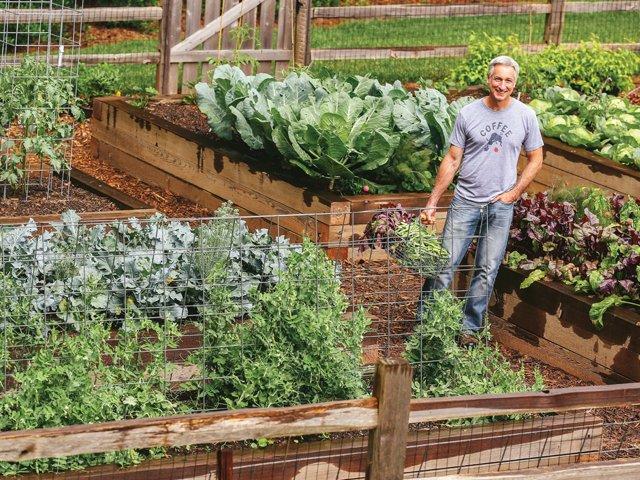 veggies-lampl in garden credit joegardener.png