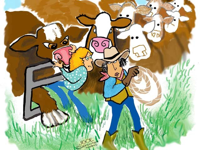 easy_on_the_bull.jpg