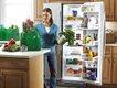 ES_refrigerator_640p.jpg