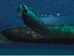 hunley_attack_underwater.jpg